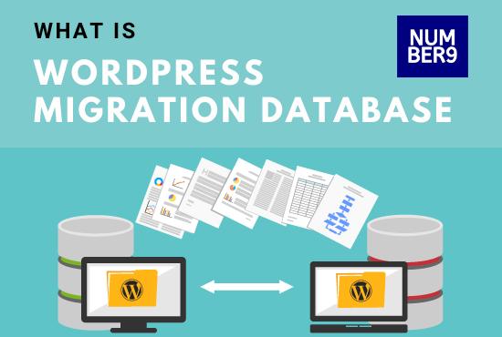 WordPress Migration Database-Number9